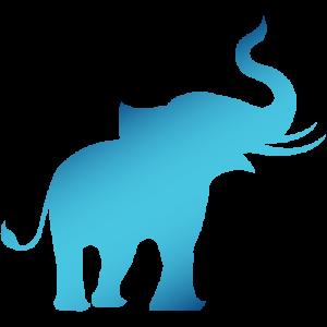 elephant-test